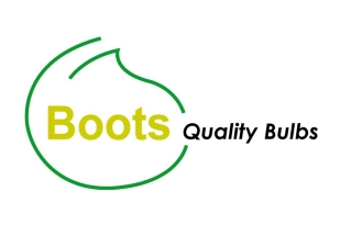 Boots Quality Bulbs