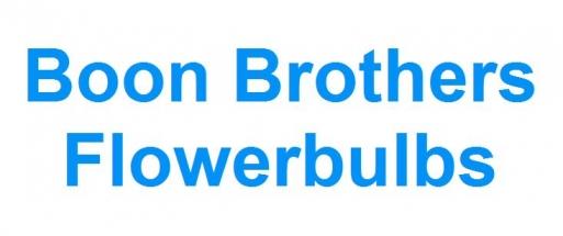 Boon Brothers Flowerbulbs